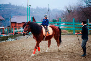 Иппотерапии и лечебная верховая езда