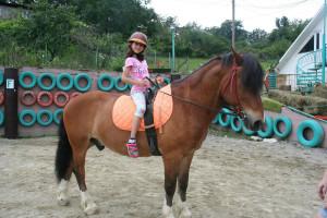 Конно-спортивный лагерь