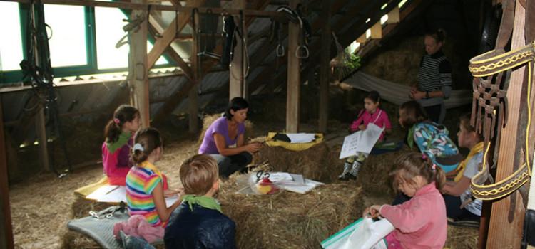 с 30 мая открывается  Конный-спортивный лагерь «Рыцари нашего времени» для детей с 6 до 14 лет