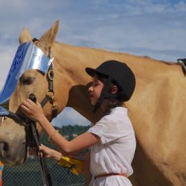 С 4 июля открывается вторая смена конно-спортивного лагеря «Рыцари нашего времени» для детей от 6 до 14 лет